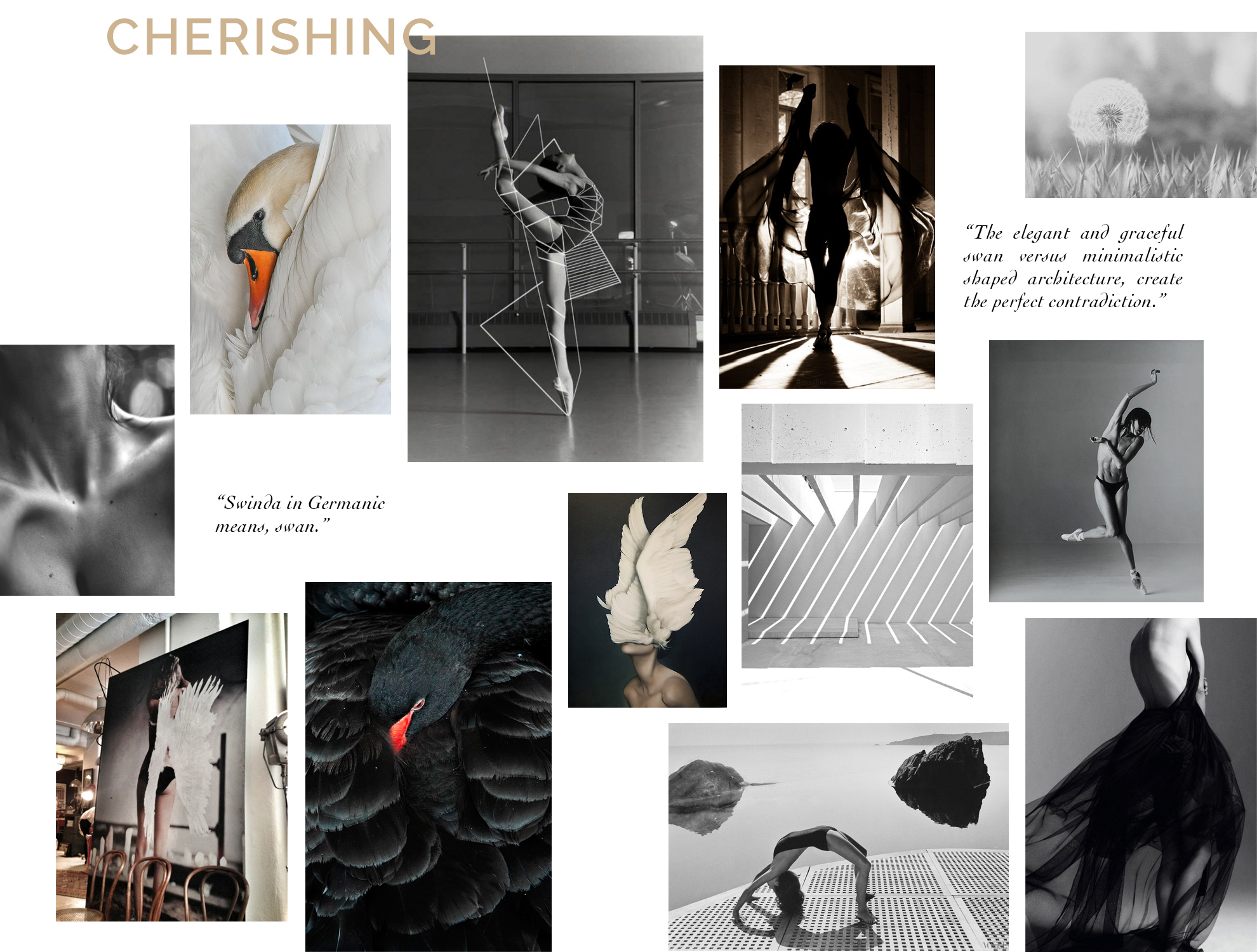SvD-Cherishing-inspiration